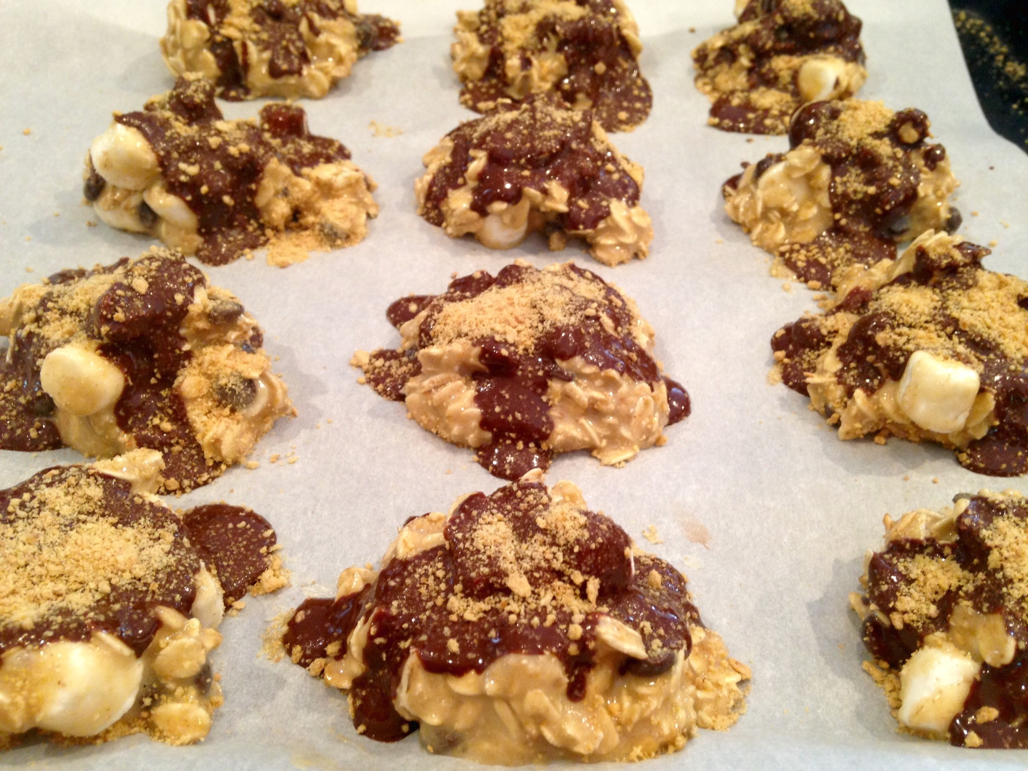 cookies no bake s mores protein cookies recipe yummly no bake s mores ...